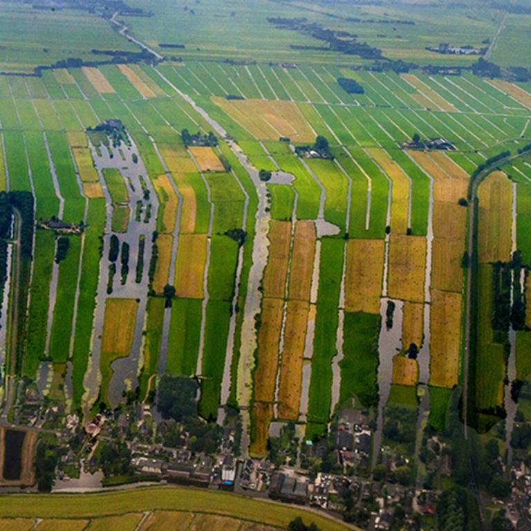 DSC_6442.jpg holand